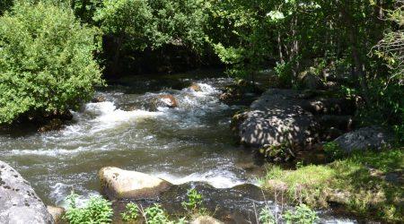 Angelparadies Wassermühle von Record
